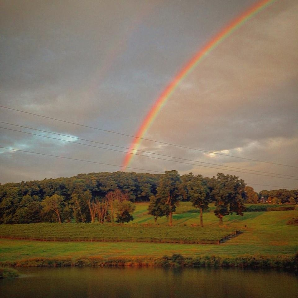 millbrook winery at the end of the rainbow