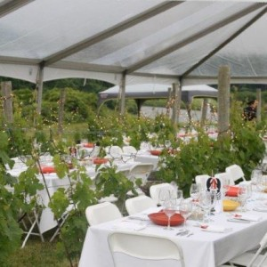 tented seating