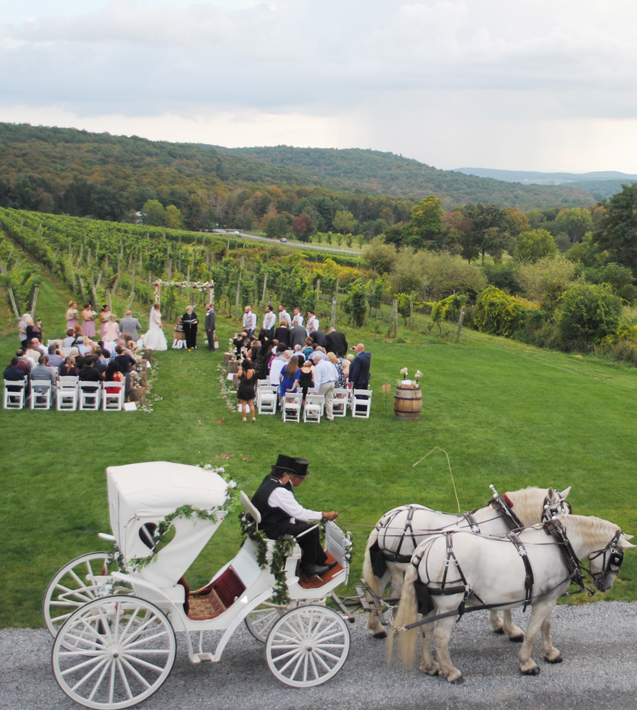 Horse drawn wedding